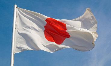 Токио: Японии пришлось ввести санкции против РФ под давлением США