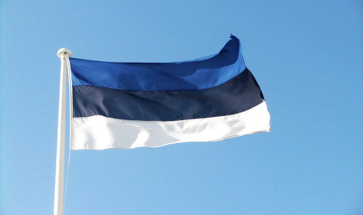 *Флаг Эстонии