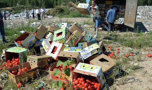 Российская Федерация будет уничтожать санкционные продукты вплоть доконца 2017-ого года
