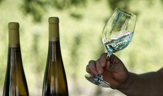 """Винодельческое хозяйство """"UPPA Winery"""" в Крыму"""
