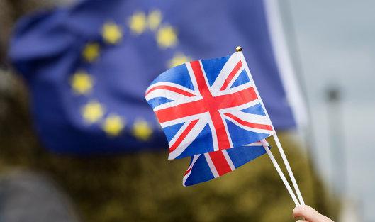 #Противники выхода Великобритании из Европейского Союза (ЕС) на улице Лондона