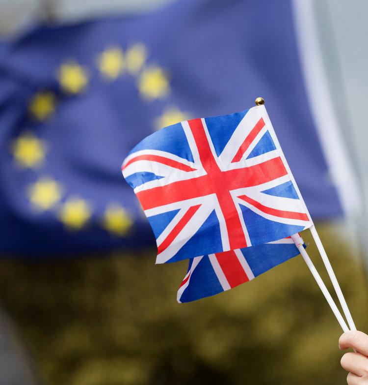 Противники выхода Великобритании из Европейского Союза (ЕС) на улице Лондона