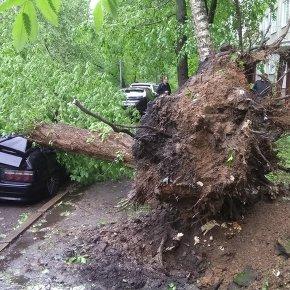 СК: Восемь человек погибли в результате урагана в Москве и области