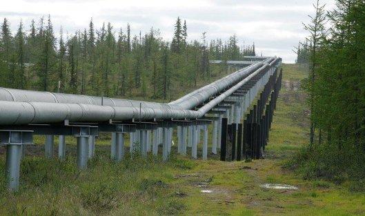 827764173 - Оператор нефтепровода в Белоруссии: Ситуация с качеством нефти из РФ улучшается