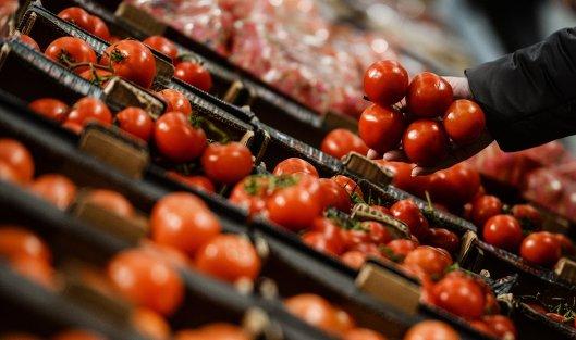 Турецкие томаты возвратятся в РФ кконцу осени
