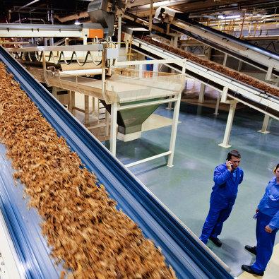 "# Табачный цех на фабрике ""Филип Моррис Ижора"""