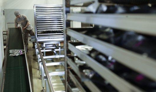 Чистый убыток Bayer за девять месяцев составил 10,8 миллиарда евро
