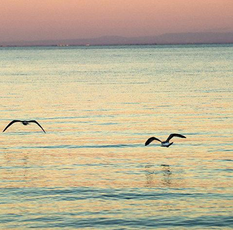 # Черное море
