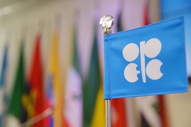 ОПЕК ожидает снижения роста спроса на нефть в мире в 2018-2019 гг