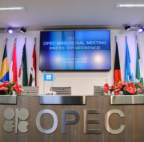 Перед началом официальной встречи Организации стран-экспортеров нефти в Вене