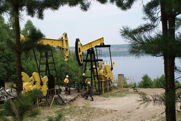 Минприроды: Запасы нефти в РФ в 2018 году выросли на 8,7%, газа - на 3,6%