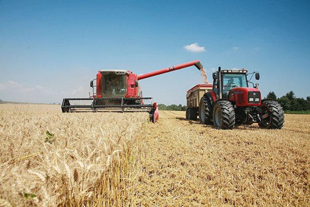 Уборка урожая зерна