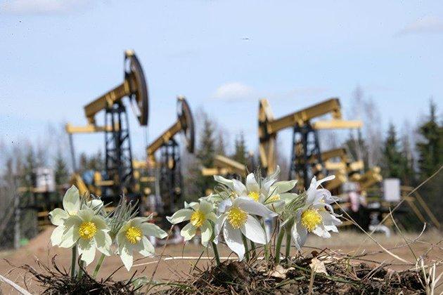 # нефтедобыча экология
