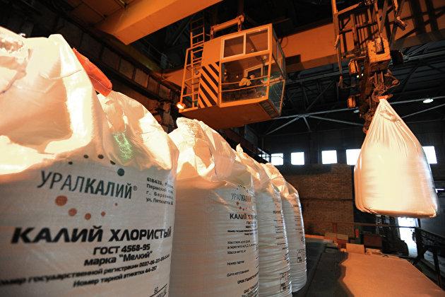 """""""Уралкалий"""" в I полугодии получил 11,5 млрд руб убытка по МСФО против прибыли годом ранее"""