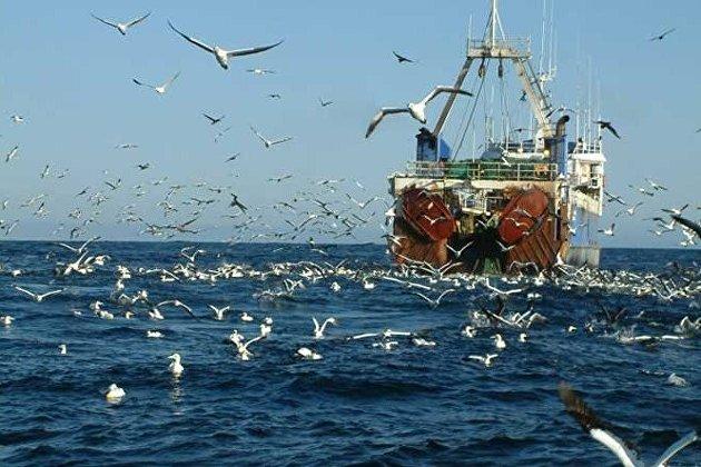 Вылов водных биоресурсов рыбаками РФ