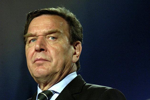 Новости: Шредер сделал заявление по «Северному потоку-2»