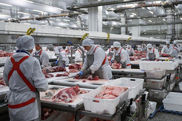 Мишустин отметил рост спроса на российские продукты за рубежом