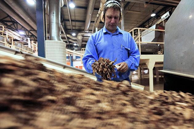 Россия может перестать закупать табачное сырье из Болгарии