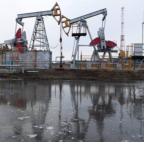 Argus: цена российской нефти Urals в Северо-Западной Европе достигла максимума с марта