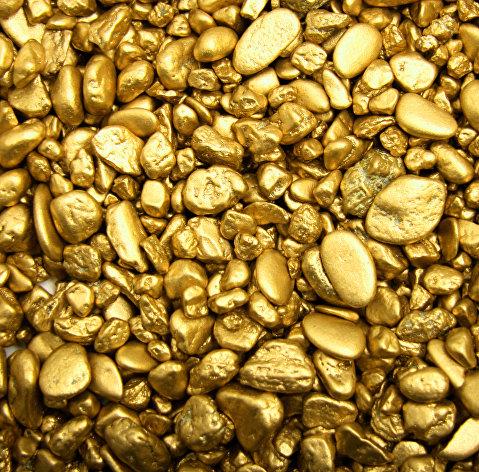 Торги акциями золотодобывающей компании Petropavlovsk стартовали на Московской бирже