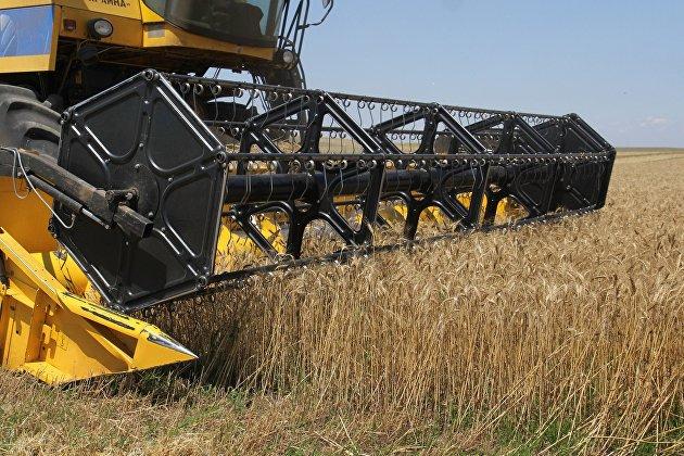 831786754 - Правительство расширит поддержку экспорта сельхозпродукции