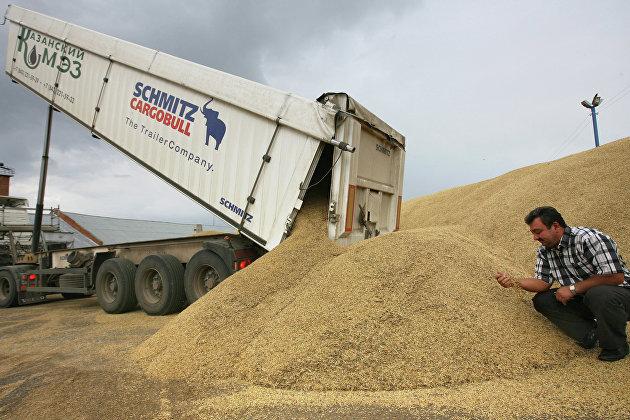 Прием зерна в элеватор