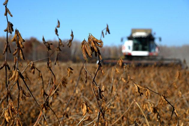 Российские регионы довели до аграриев 27% федеральных субсидий