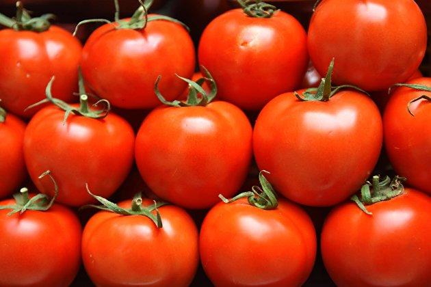Эксперт назвал причину роста цен на помидоры и огурцы в России