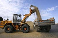 РФ с начала сельхозгода экспортировала более 900 тыс тонн зерна - Минсельхоз