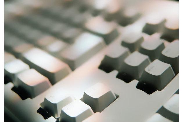 Минцифры объявило о готовности к электронной переписи населени