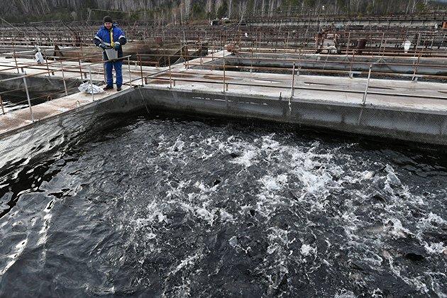 Росприроднадзор подтвердил загрязнение вод Хакасии из-за золотодобытчиков