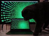 """Строчки с цифрами на экранах компьютера и ноутбука. """"Кибератака"""""""