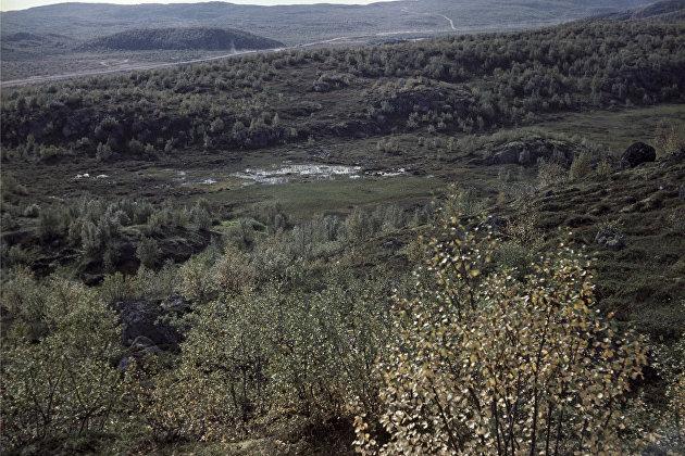 Путин упростил предоставление болот для добычи полезных ископаемых